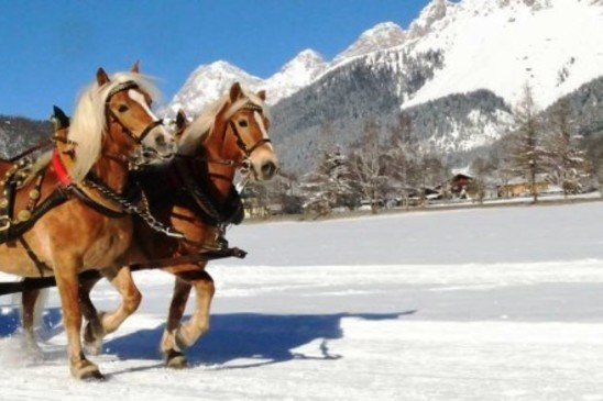 ramsau_pferdeschlitten-1500x430